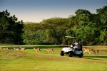 Kruger Park Lodge - Golf Course