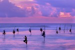 Fishermen on stilts at the sunset Sri Lanka iStock 1059088442